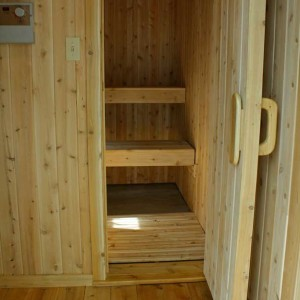 Electric Sauna interior view